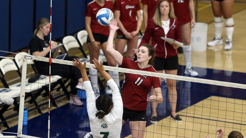 Wildcats Fall in Straight Sets in Season Opener
